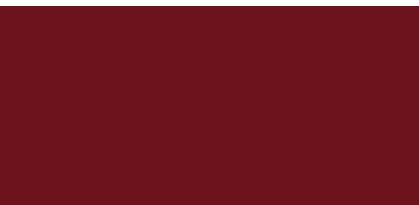 Aiple Logo Weinrot