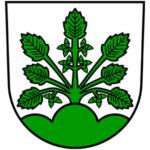 Haslach iK Wappen